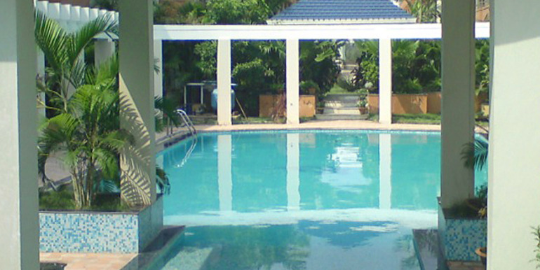 Blue lily swimming pool
